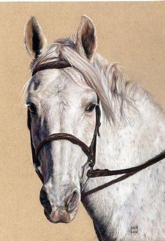 Candace Maley - Lyra- - Painting entry - January 2013 | BoldBrush Painting Competition