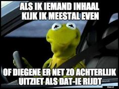 """Kermit the frog driving. """"My face when. I'm finally next to the person who wouldn't let me over. Caricature, Donald Trump Pictures, Funny Quotes, Funny Memes, It's Funny, Hilarious Sayings, Funny Messages, Quotable Quotes, My Face When"""