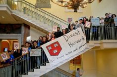 Chloe Maxmin is an ACE alumn and a student leader in the Divest Harvard campaign at Harvard University, MA.