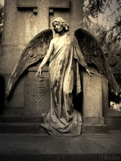 ☫ Angelic ☫ winged cemetery angels and zen statuary - Milano, Italy Cemetery Angels, Cemetery Statues, Cemetery Art, Angel Statues, Angels Among Us, Angels And Demons, Angel Sculpture, Sculpture Art, Old Cemeteries