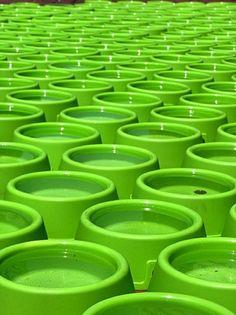 Green | Grün | Verde | Grøn | Groen | 緑 | Emerald