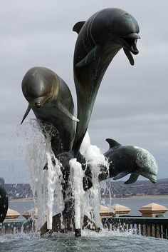 Dolphin sculpture, Monterey Bay, California. Best Thanksgiving ever when my sister lived there!
