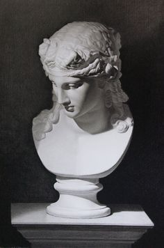 Cast Drawing Gallery · Academy of Classical Design · School of Fine Art Academy Classical RealismInstruction Atelier - Cast Painting Gallery Roman Sculpture, Art Sculpture, Sculptures, Academic Drawing, Academic Art, Roman Art, Greek Art, Painting Gallery, Art Academy