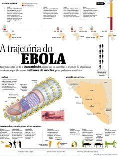 ✔ Brazil SFE® Tech - Infográficos do Jornal Folha de São Paulo