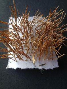 Pine needles and paper -by Highland Fairy (Heidi) via Flickr