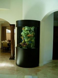 Wall aquarium! I like.