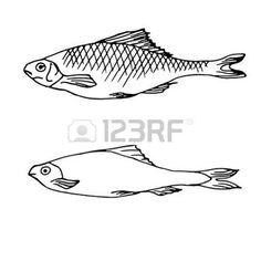 Fish Typography Stock Vector Illustration And Royalty Free Fish Typography Clipart