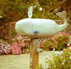 Whale post box #letterbox #whale