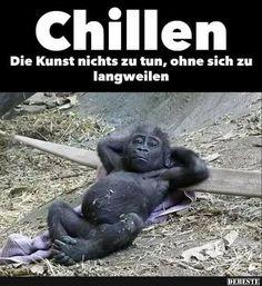Chillen.. Die Kunst nichts zu tun... | Lustige Bilder, Sprüche, Witze, echt lustig