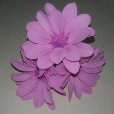 Шпильки для волос. Розовые герберы