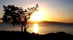 Lovely and silent sunset at kupang, nusa tenggara timor Indonesia