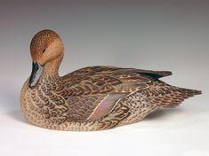 Northern Pintail Hen 2005 - Godin Art