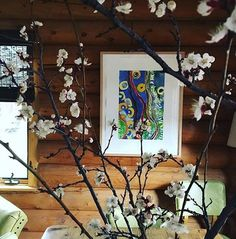 """109 Likes, 5 Comments - Isa Catto Art (@isacattostudio) on Instagram: """"Another beautiful in situ, sent from @amymaron -- art and apricot blossoms. #isacattostudio…"""""""