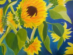 Brilliant sunflowers by Camilla