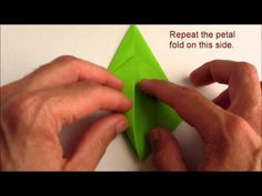 This is an elegant origami 8 pointed star that is perfect for the top of your origami christmas tree. Find out how to fold this beautiful origami star here. Origami Flapping Bird, Origami Bird, Origami Folding, Origami Flowers, Origami Easy, Origami Paper, Origami Hearts, Dollar Origami, Origami Instructions
