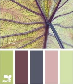 Nature Leaf Color Palette via Design Seed. Green hues mixed with earth brown, charcoal gray, & a soft beige-pink tone.