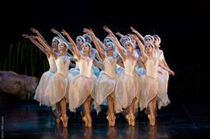 "Northern Ballet, David Nixon's ""Swan Lake"" (Photo: Bill Cooper)"