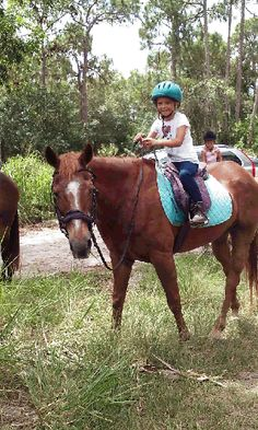 Sunny Time Stables, Palm City, FL: Sunny Time Stables offers lessons catering to each clients needs. All ages are welcome, english- hunt seat, dressage, & western.