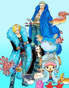 Roronoa Zoro Sanji Vinsmoke Tony Tony Chopper Nico Robin Straw Hat Crew Pirates Mugiwaras One Piece