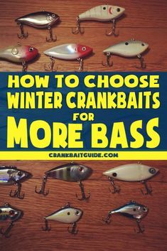 Hot to choose winter crankbaits for more bass