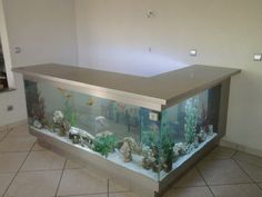 Awesome 36 Fascinating Aquarium Design Ideas That Make Your Home Look Beauty. Fish Tank Table, Fish Tank Stand, Aquarium Terrarium, Cool Fish Tanks, Amazing Aquariums, Aquarium Design, Tanked Aquariums, Aquascaping, Beautiful Fish