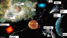 Examples of precursor organics of life