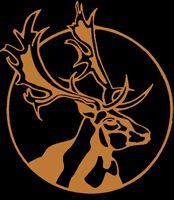 Deer Creek Lodge - Turner Falls Oklahoma OK Lodges - Talk about a family reunion!!!