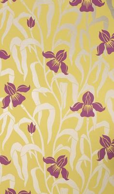 Wallpaper - VINTAGE II Iris Wallpapers From Osborne and Little - wallpaper, floral, yellow, pink