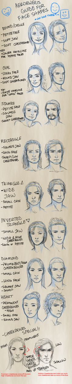 Guide For Drawing Face Shapes Illustration Cheat