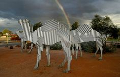 Tin Statues the size of Camels! A 2 hour drive south of Kalgoorlie Boulder, nestled on the main roundabout of Norseman, are some very cleverly constructed corrugated iron camels. As tall as the average human being, these camel statues command your attention - and are a tribute to the early camel trains that carried freight to and from the town. Great Western, Camels, Amazing Destinations, Bouldering, Statues, Apartments, Trains, Iron, Australia