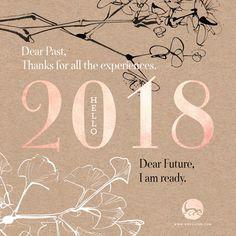 Hello 2018 – Résolutions & Bilan 2017