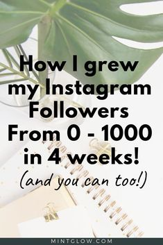 I grew my Instagram followers from 0-1000 in 4 weeks! See how I did it and how you can grow your Instagram followers organically too! No tricks or shady moves. #instagram #growyourinstagram #socialmedia