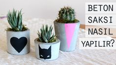 Concrete Planter Making Concrete Cement, Concrete Planters, Planter Pots, Cement Crafts, Cactus Decor, Sustainable Design, Interior Design Living Room, Color Schemes, Diy And Crafts