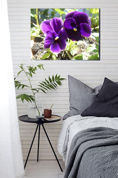 Canvas Print of my Photography 30 X 40 Large Canvas Purple Pansies Flowers Blossom Modern Wall Decor Original Photography Limited Edition by SpiritualGiftGallery on Etsy