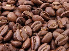 El café, es uno de los soportes de la economía hondureña ◆Honduras - Wikipedia http://es.wikipedia.org/wiki/Honduras #Honduras