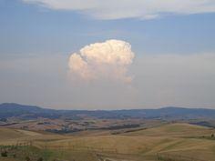 Zwischen Pisa und Volterra