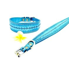 www.Vagabond-Dogs.com The world's coolest dog collars!!! (according to me.  I make them.) Please visit our new website for all the styles and colors! PRODUCT WARNING: your dog may start demanding more champagne in the afternoons.