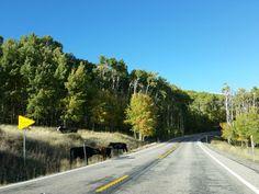 Scenic Byway 12, USA #roadtrip