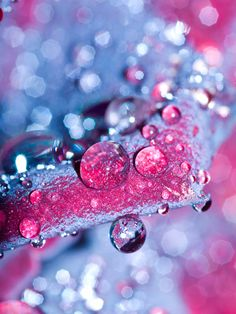 droplets ~ pink  blue