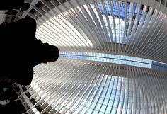 New York's Oculus transit hub soars, but it's a phoenix with a price tag