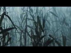 Värttinä - Utuneito (promotional video)
