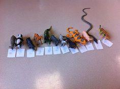 Voici un atelier individuel très prisé par mes grandes sections... Quelques animaux, des lettres (pas le nom mais le son) et on cherche pour chaque animal quel est le premier son que l'on entend...