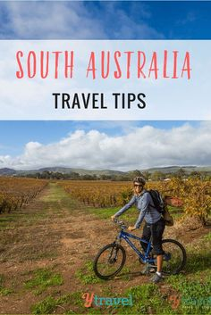 Best of South Australia Travel Tips - Things to do in SA Looking for South Australia travel tips? Check out these tips on Adelaide, Barossa Valley, Flinders Ranges National Park, the Eyre Peninsula and more! Australia Tours, Visit Australia, South Australia, Australia Travel, Solo Travel, Travel Tips, Travel Destinations, Travel Ideas, Travel Info