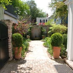 Tropical Landscape Design, Pictures, Remodel, Decor and Ideas - page 81