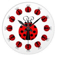 Imagini pentru cute ladybird