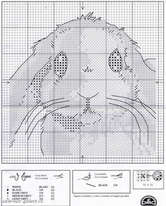 Borduurpatroon kruissteek Dieren *Embroidery Cross Stitch Animals  ~Wit Konijn 2/2~