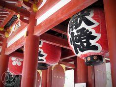 Oravanpesä | Japani 2011, Dazaifu.