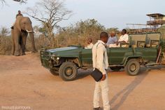 Experience the joy of a safari in the spectacular Kwa Madwala Private Game Reserve with Mount Zion Tours and Travels. Private Games, Game Reserve, 4x4, Safari, Antique Cars, Monster Trucks, Tours, Travel, Vintage Cars