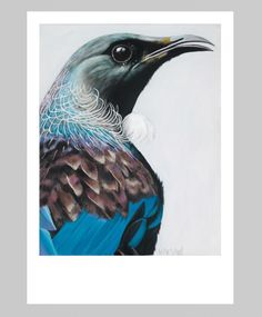 Tui painting | Margaret Petchell