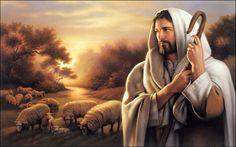 Jesus Shepherd - 1791209
